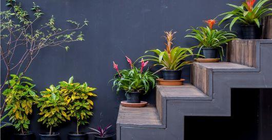 decoração de escada com plantas no lado externo