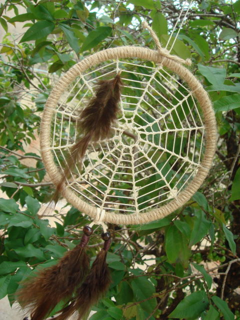 modelo teia de aranha