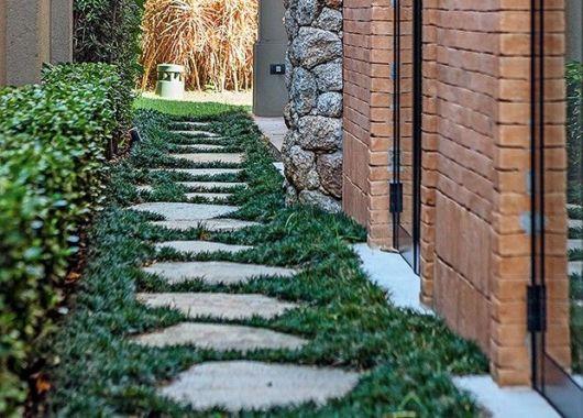 grama preta detalhes jardim