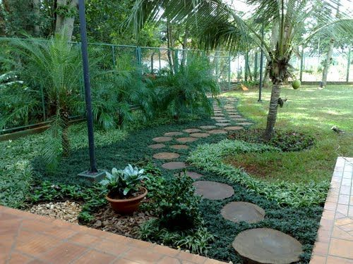 grama preta jardim