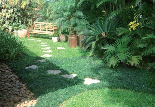 grama preta para jardim