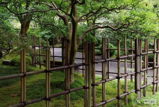 cerca-de-madeira-jardim