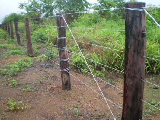 cerca-para-jardim-arame-tradicional