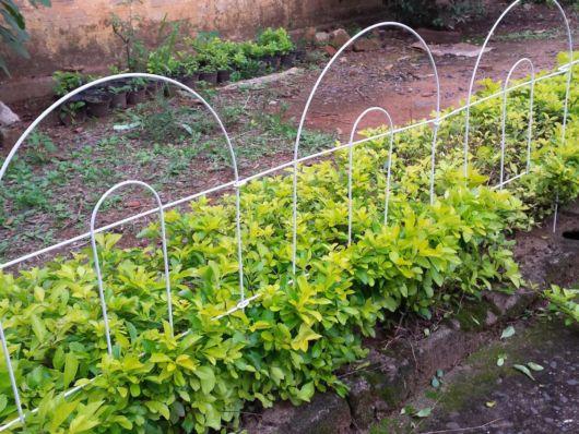cerca de jardim em pvc : cerca de jardim em pvc:Esse modelo de cerca para jardim de arame é o mais usado em espaços