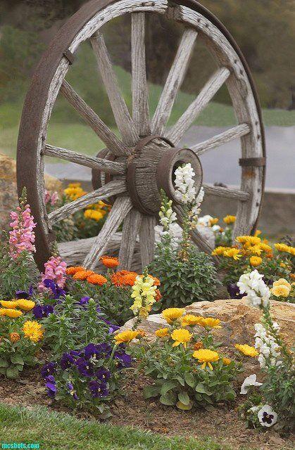 roda de madeira