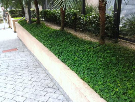 jardins simples