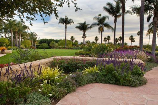 jardim-com-palmeiras-grandes