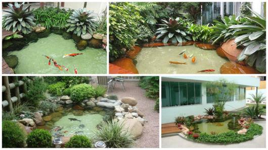 lagos com peixes