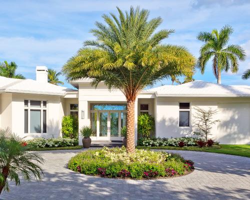 palmeira-grande-para-jardim