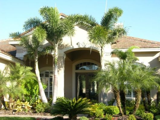 palmeiras-grandes-para-jardim