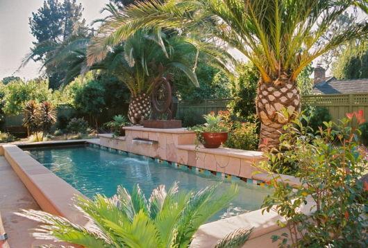 palmeiras-ornamentais