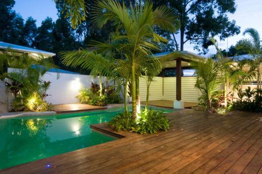 Resultado de imagem para palmeiras pequeno porte