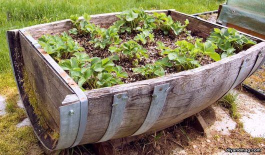 vasos-para-jardim-barril