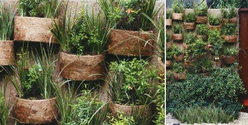 vasos-para-jardim-fibra-de-coco-dicas