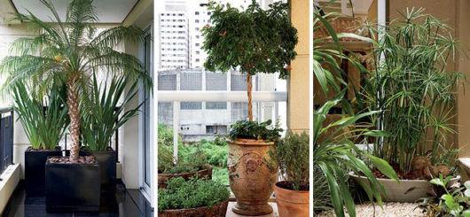 vasos-para-jardim-vertical-tipos