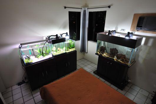 aquario-simples-no-quarto