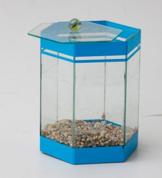 aquario-pequeno