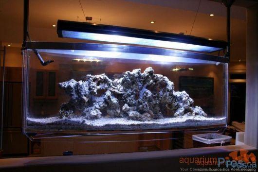 aquario-suspenso