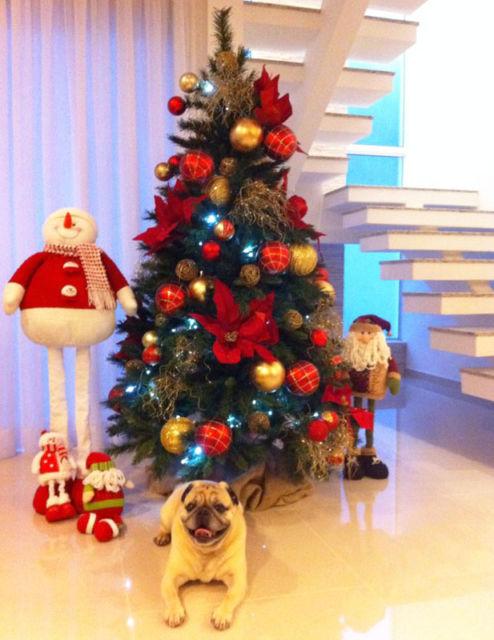 decoração árvore de natal moderna