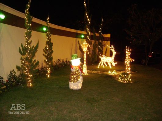 decoração iluminada jardim