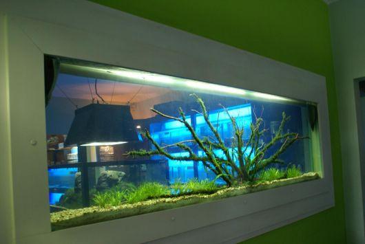 Modelos e fotos de aqu rios dicas pre o cuidados e - Fotos para paredes ...