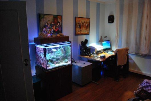 fotos-de-aquarios-no-quarto