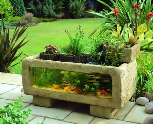 fotos-de-aquarios-no-quintal