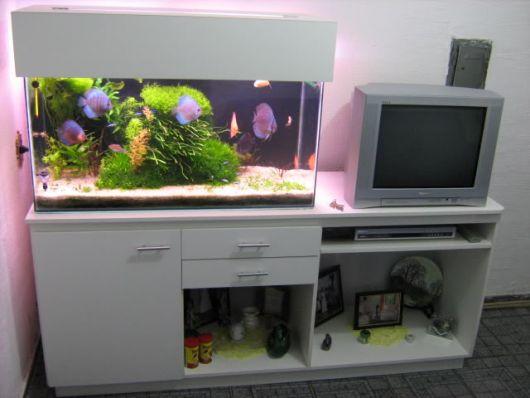 fotos-de-aquarios-quarto