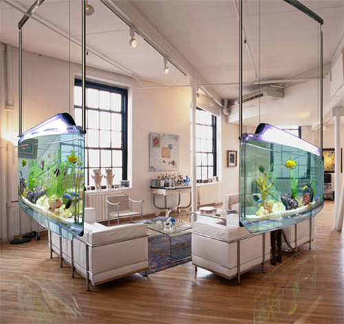 fotos-de-aquarios-suspensos