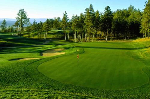 grama-coreana-japonesa-golf