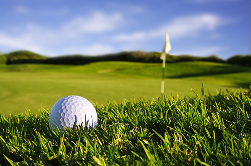 grama-coreana-japonesa-para-golf