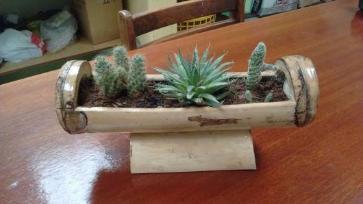 vasos-de-bambu-com-suculenta