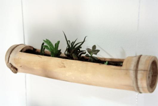 vasos-de-bambu-com-suculentas