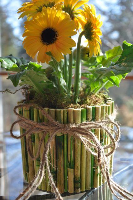 vasos de bambu  como decorar  diy   30 ideias incr u00edveis