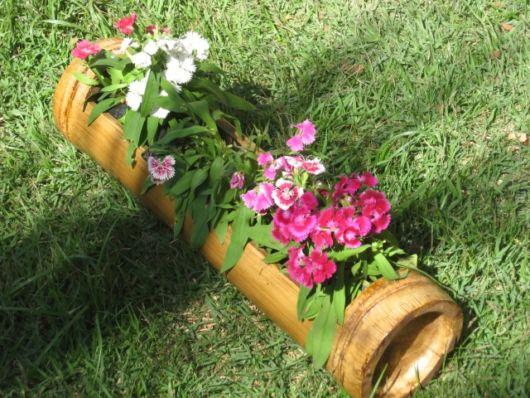vasos-de-bambu-ideias