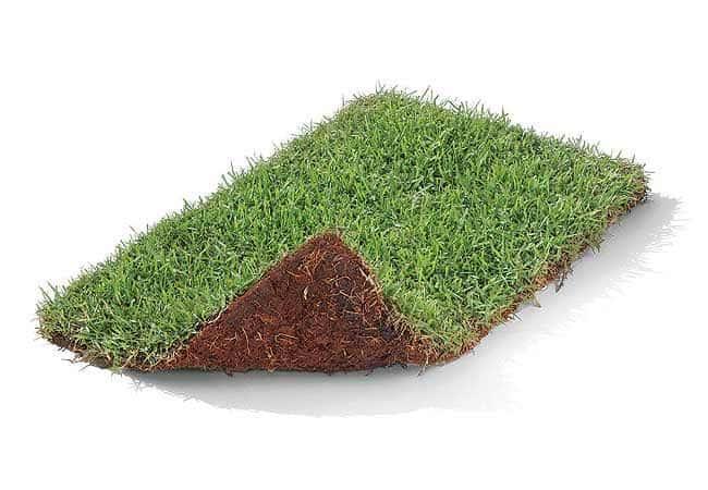 Placas de grama para concregrama