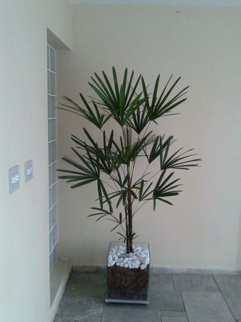 arvore-artificial-palmeira-rafia