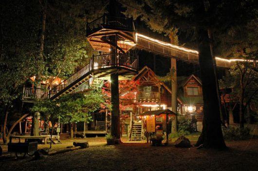 casas-na-floresta-moderna-e-luxo