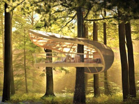 casas-na-floresta-moderna-luxuosa