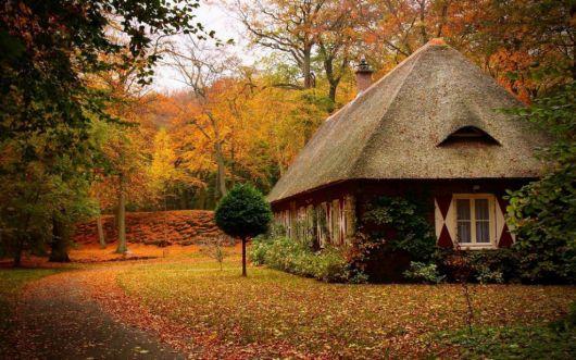 casas-na-floresta-simples-1