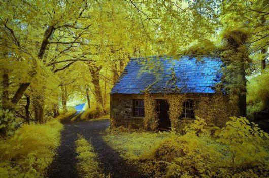 casas-na-floresta-simples-7