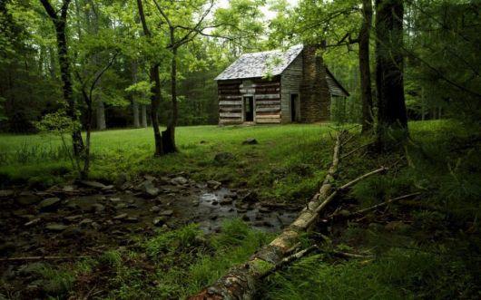 casas-na-floresta-simples-9