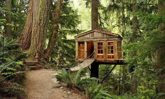 casas-na-floresta-simples-criativas