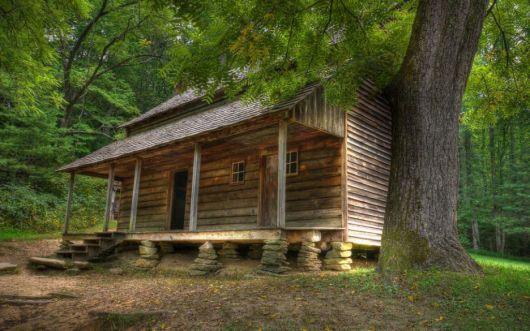 casas-na-floresta-simples-de-madeira