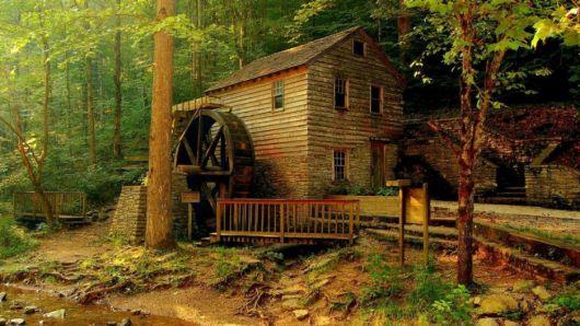 casas-na-floresta-simples-e-rustica