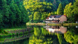 projetos de casas no lago