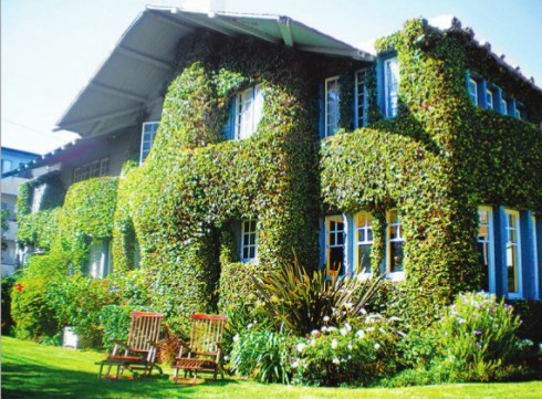 fachadas-verdes-ecologicas-10