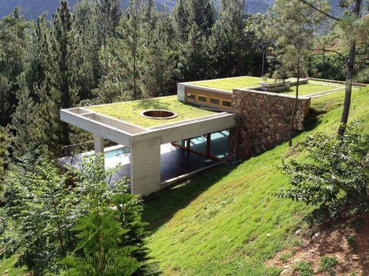 fachadas-verdes-ecologicas-4