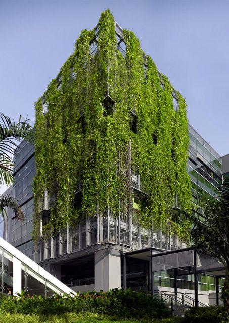 fachadas-verdes-ecologicas-7