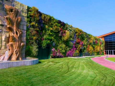 fachadas-verdes-ecologicas-linda
